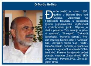 DjNesic Identitet